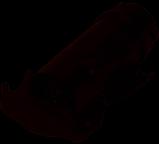 Adapter für 13polige Steckdose zu 7poliger Stecker